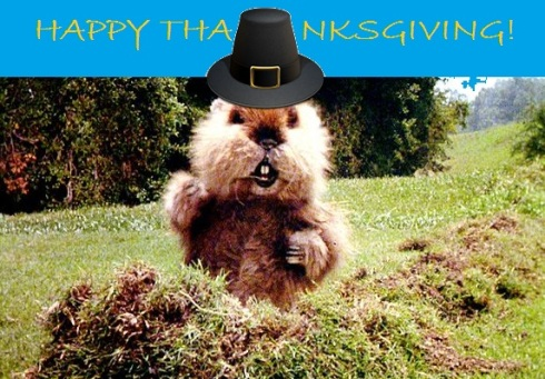 thanksgiving-gopher